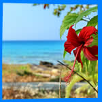 Ко Куд, Koh Kood, отель на Ко Куд, отели Ко Куд, отдых на Ко Куд, фото Ко Куд, туры на Ко Куд, дешевые авиабилеты, острова, ресторан, еда, ночной клуб, пляж, номер в отеле на Ко Куд, медовый месяц, на Ко Кут