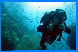 Popular Dive Sites nearby Koh Chang