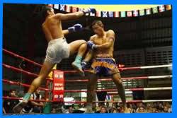 Thai box - Muay Thai