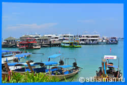Tonsai Bay Overview, Phi Phi Islands Travel Guide
