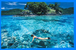 Phi Phi Islands Snorkeling, The Best Places for Snorkeling on Phi Phi Islands